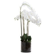 Large White Tall Orchid In Glass Pot - Thumb 1