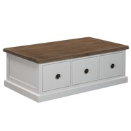 The Hampton Collection Three Drawer Coffee Table